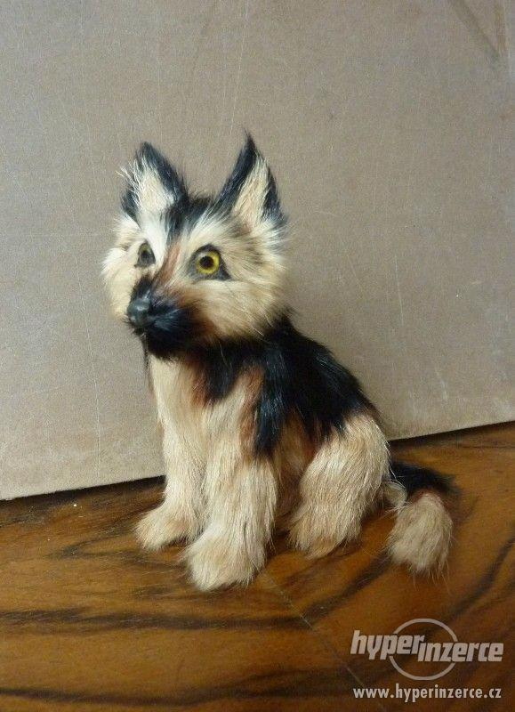 Pes hnědočerný strakáč -  figurka 12 x 11,5 x 9 cm - foto 1