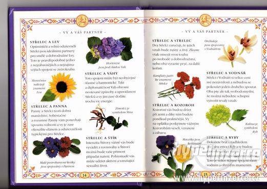 Střelec - Horoskopy lásky - 1998 Zodiac Zvěrokruh - foto 1