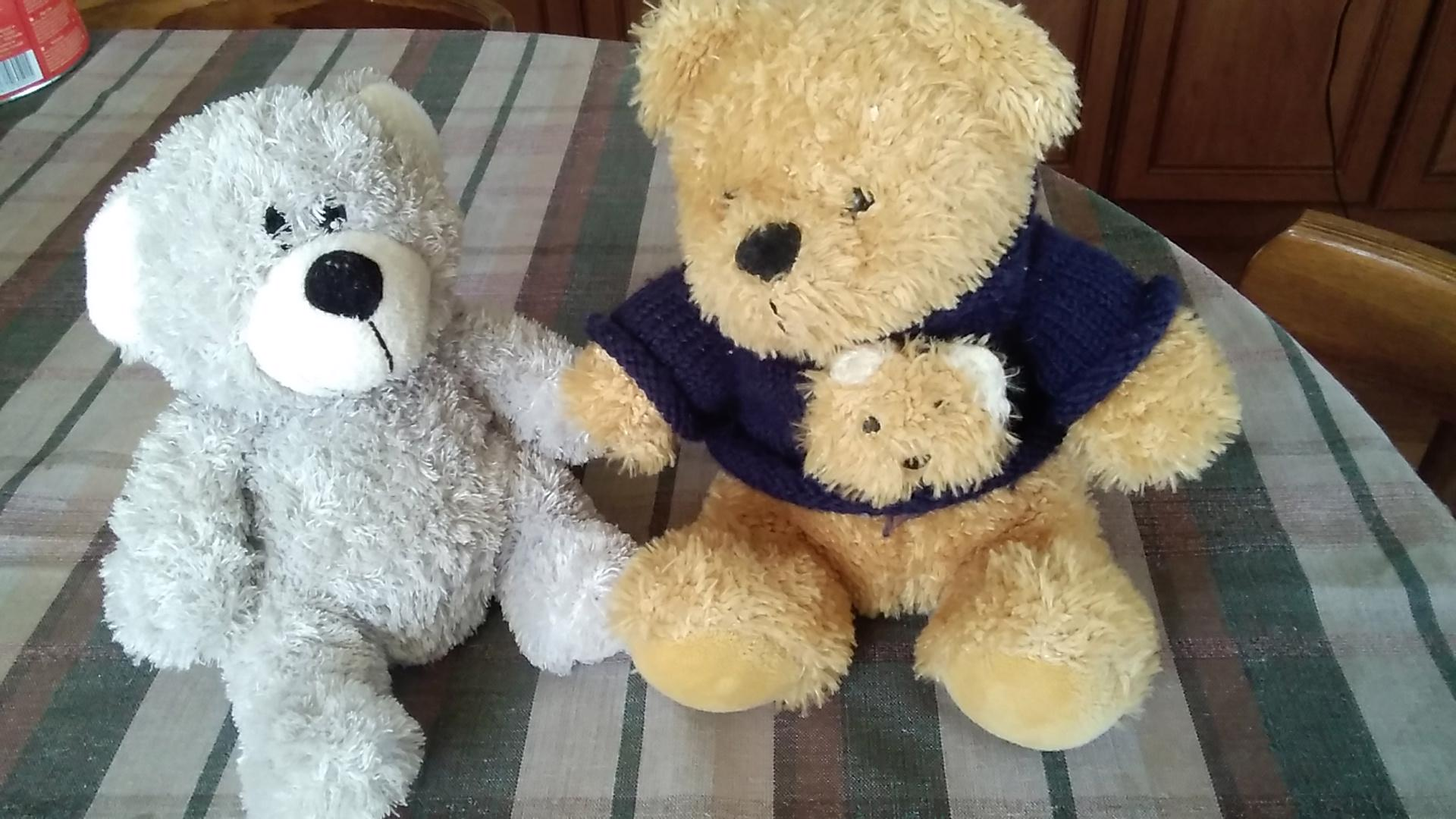 Dva medvídci - foto 1