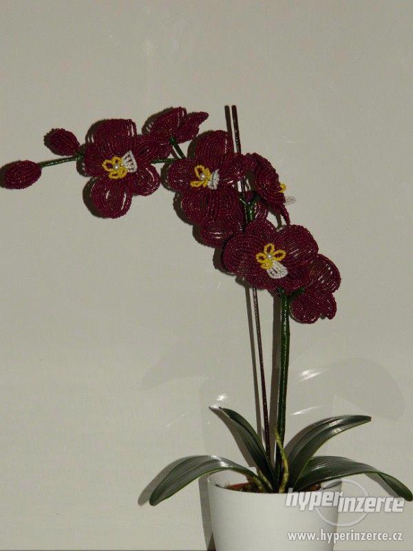 Orchideje z korálku
