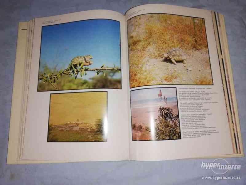 AFRIKA ŽIVOT A SMRT ZVÍŘAT - JOSEF VAGNER - foto 5