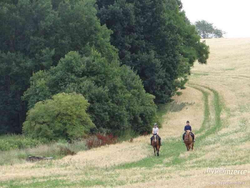 Prázdniny s koňmi- Tábor Koně v Trní - foto 1