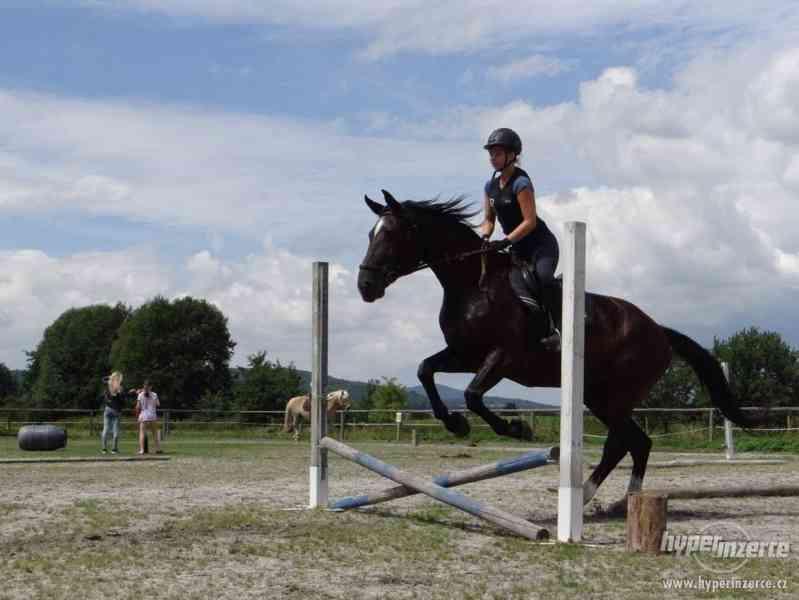 Prázdniny s koňmi- Tábor Koně v Trní - foto 2