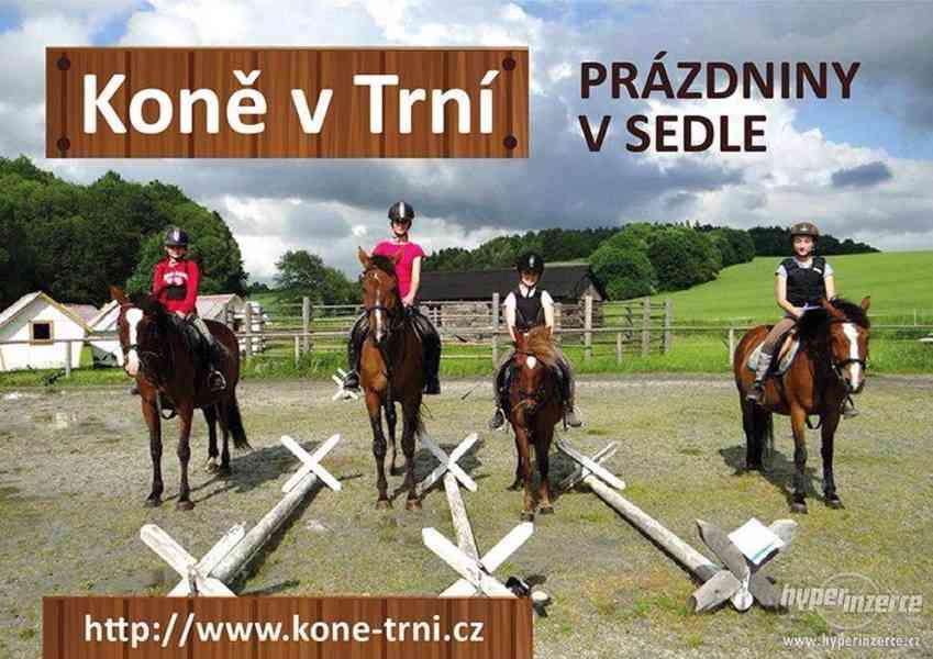 Prázdniny s koňmi- Tábor Koně v Trní - foto 5