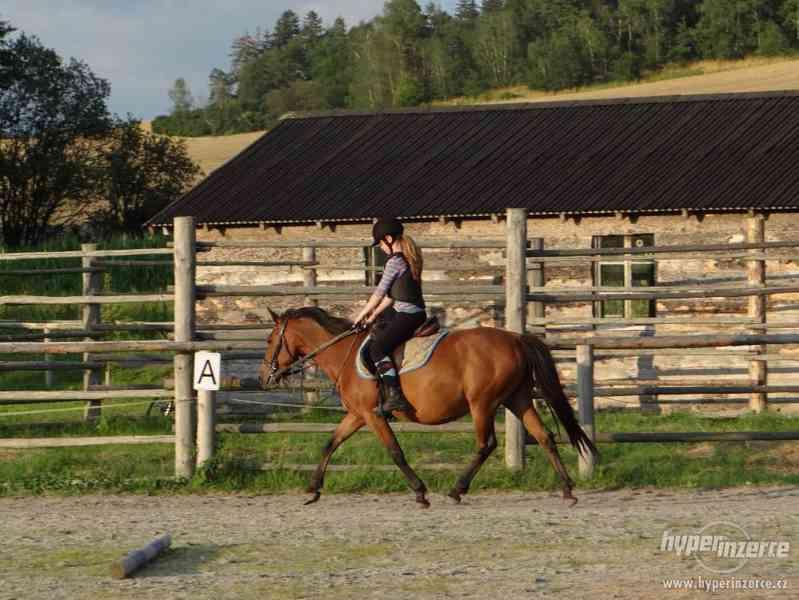 Prázdniny s koňmi- Tábor Koně v Trní - foto 7