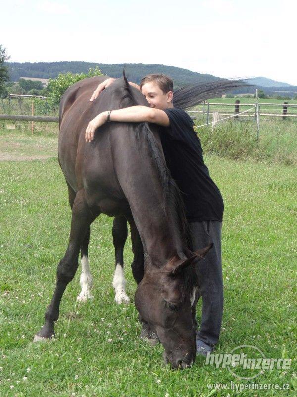 Prázdniny s koňmi- Tábor Koně v Trní - foto 4