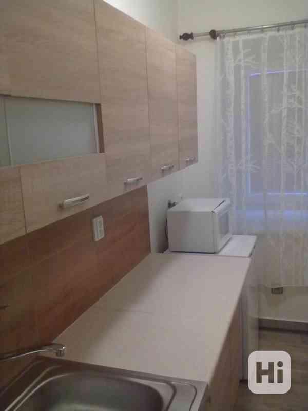 Pronájem vybaveného bytu 1+1, v Přáslavicích  u Olomouce - foto 7