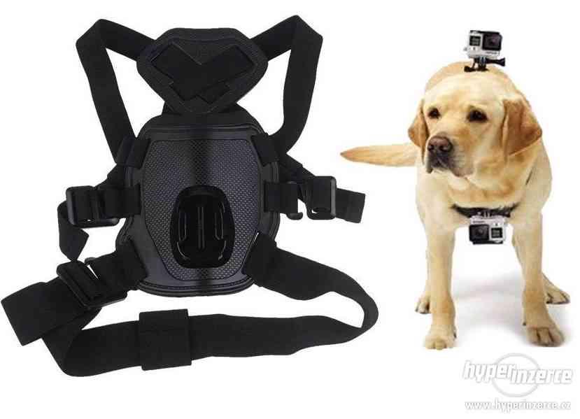 Držák na psa pro GoPro kamery
