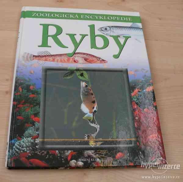 Zoologická encyklopedie ryby