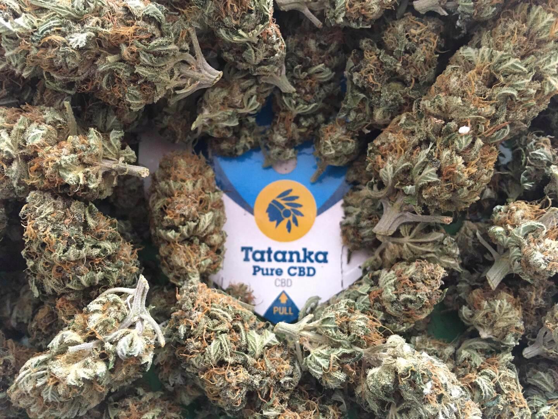 CBD květy konopí Tatanka Pure - foto 1