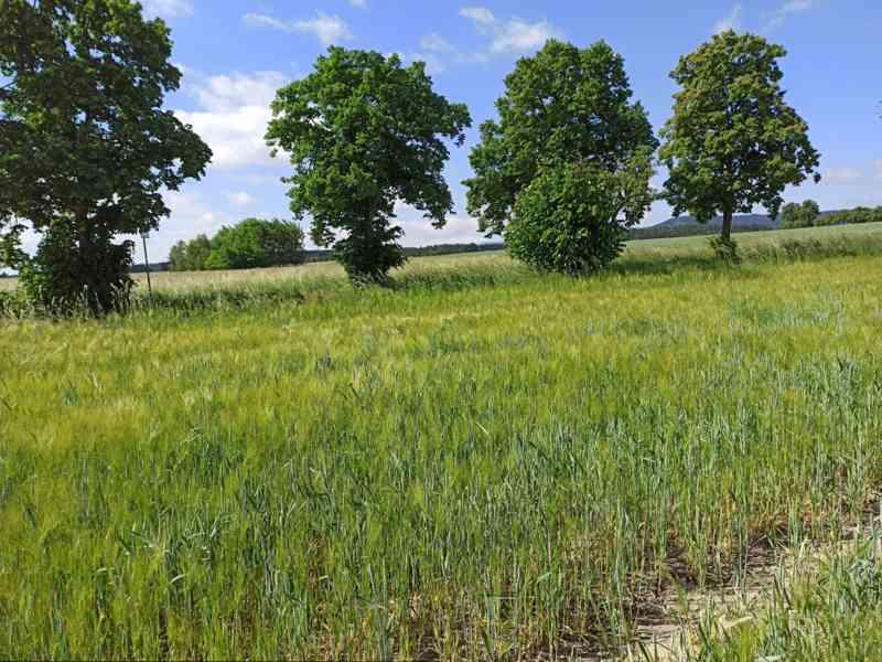 Pozemek u Českých Budějovic - foto 2