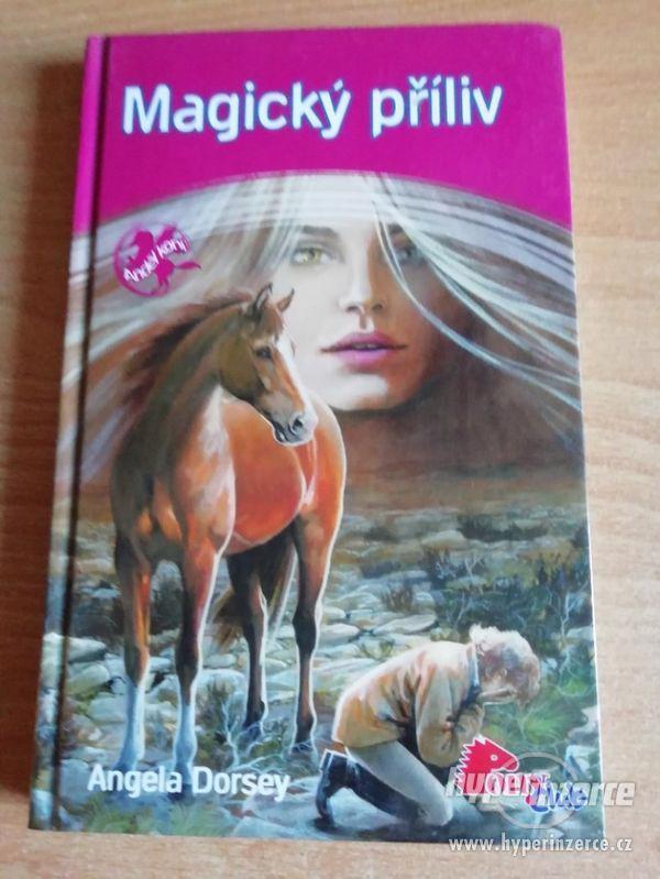 Magický příliv - Angela Dorsey - vydáno 2007 - edice Pony cl - foto 1