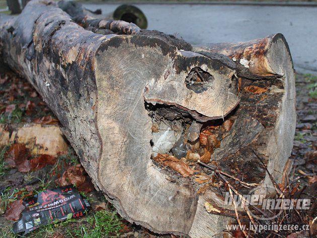Sháním fošny, kmeny tvrdého dřeva - foto 3