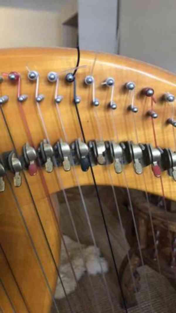 prodám harfu - foto 12