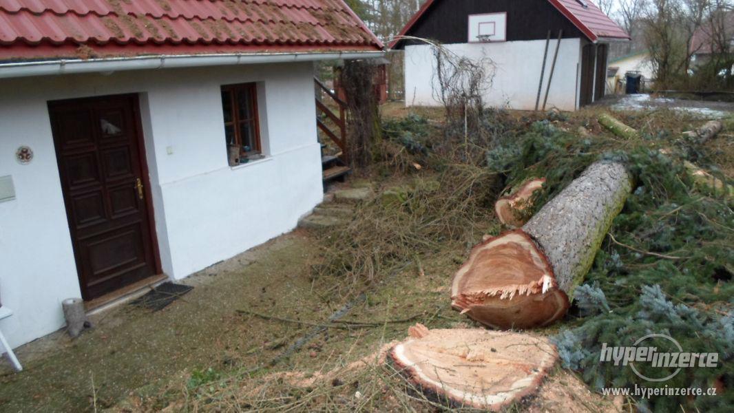 Kácení stromů Tišnov a okolí , Rizikové kácení stromů