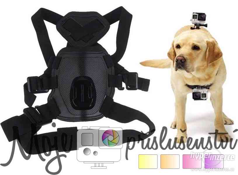 Držák na psa pro GoPro kamery a podobné