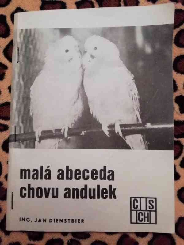 Malá abeceda chovu andulek - ing. Jan Dientsbier