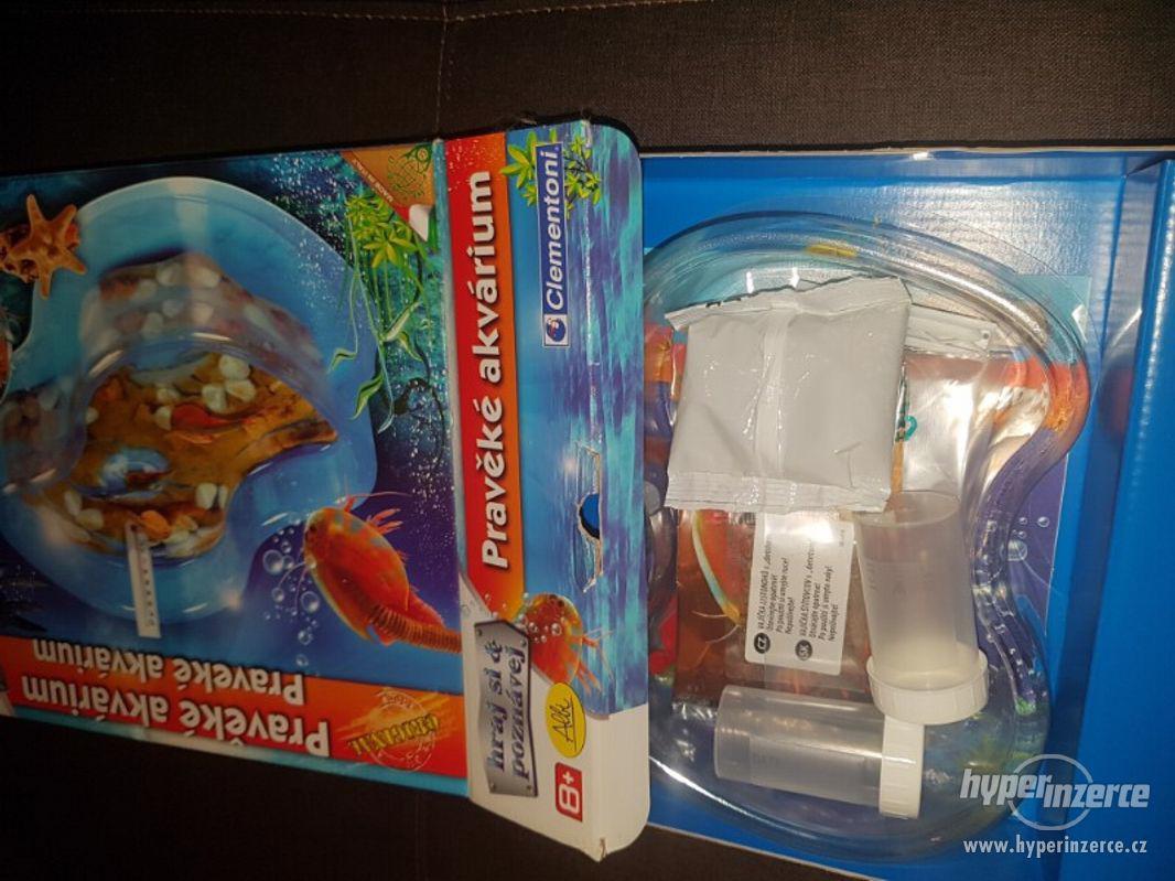 Pravěké akvarium - foto 1