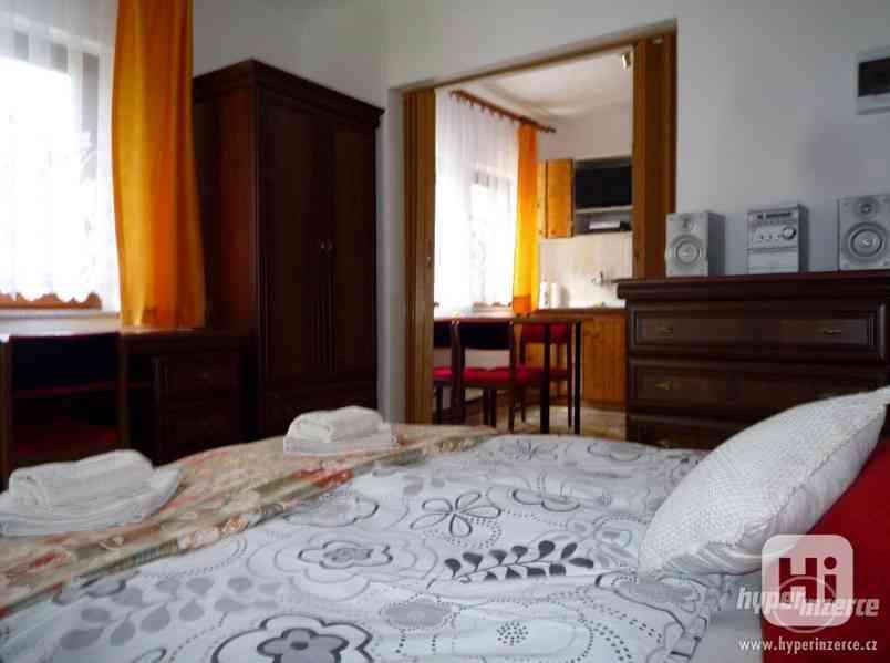 Jeseníky -Silvestrovsky týdenní pobyt- apartmán až 4 os. - foto 19