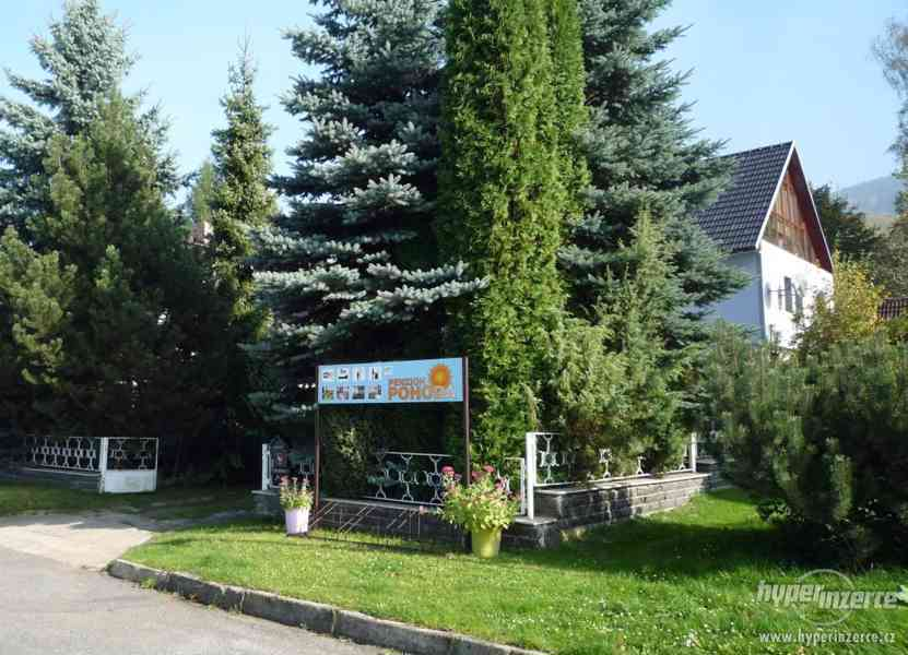 Jeseníky - ubytování v apartmánu  až 4 os. Privátní vchod. - foto 22