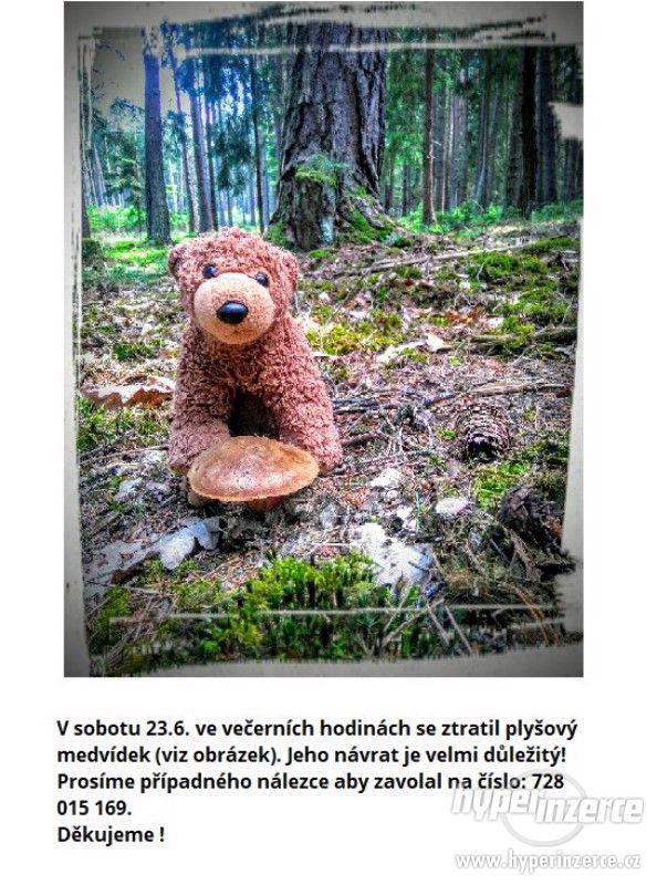Plyšový medvídek - foto 1