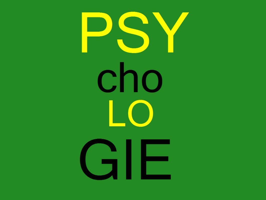 Psychologie přijímačky, výukový program Juve - foto 1