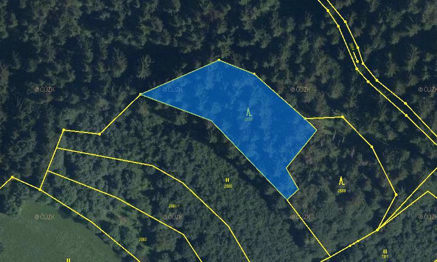 Prodej lesních pozemků 8168m2
