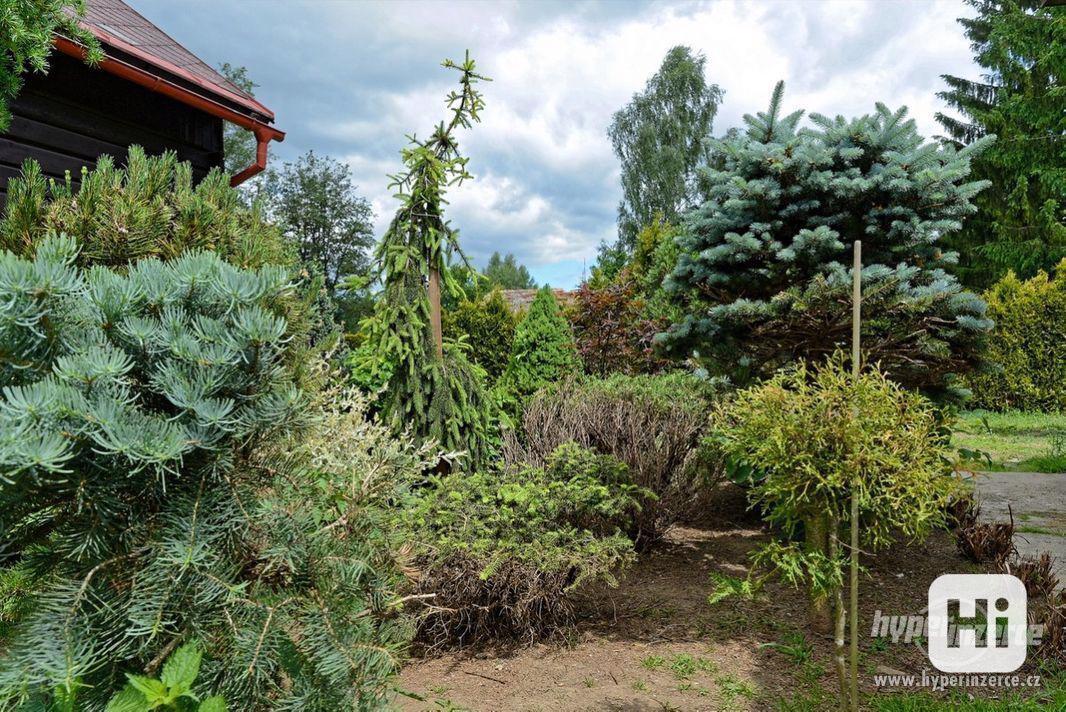 Údržba zeleně a životního prostředí - foto 1