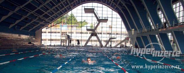 Trenér plavání! Dospělí i děti