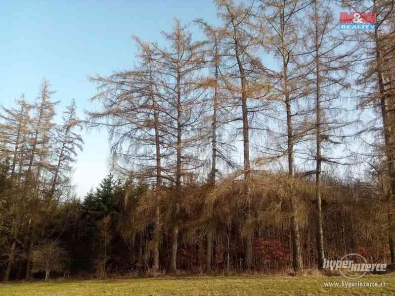 Prodej lesa, 103591 m?, Doudleby nad Orlicí - foto 4