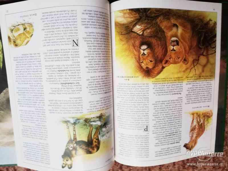 Knihy - sada dětských encyklopedií (i jednotlivě) - foto 11