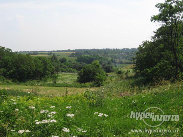 Exkluzivní nabídka pozemku na  Ukrajině 38 ha!!!