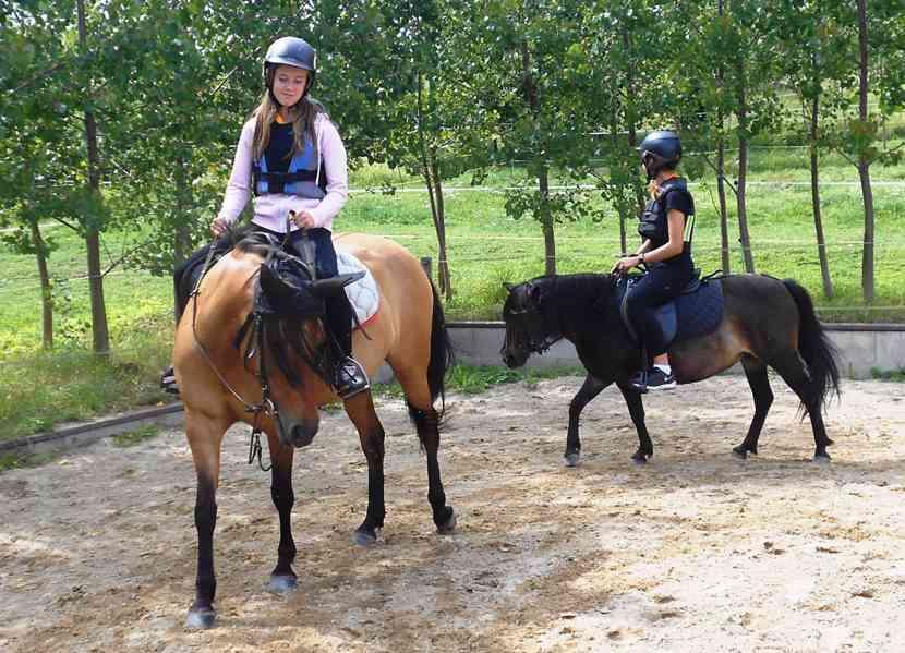 Hledáme praktikanty/oddílové vedoucí na letní tábor na Lipně - foto 3