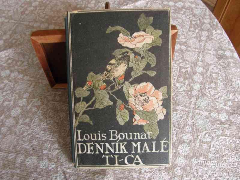 Deník malé Ti-ca - románek exotické lásky - foto 1