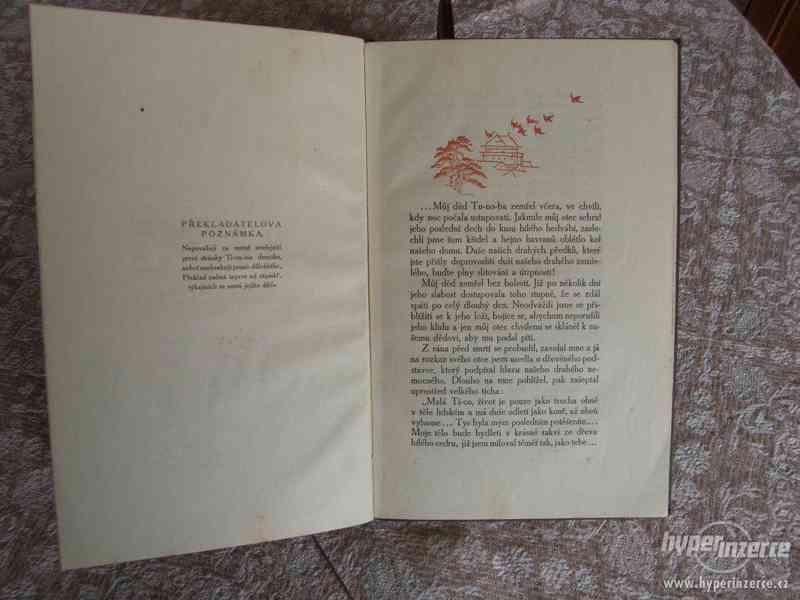 Deník malé Ti-ca - románek exotické lásky - foto 4