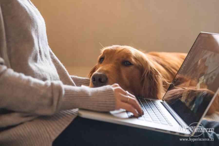 Pohodlná práce z domova