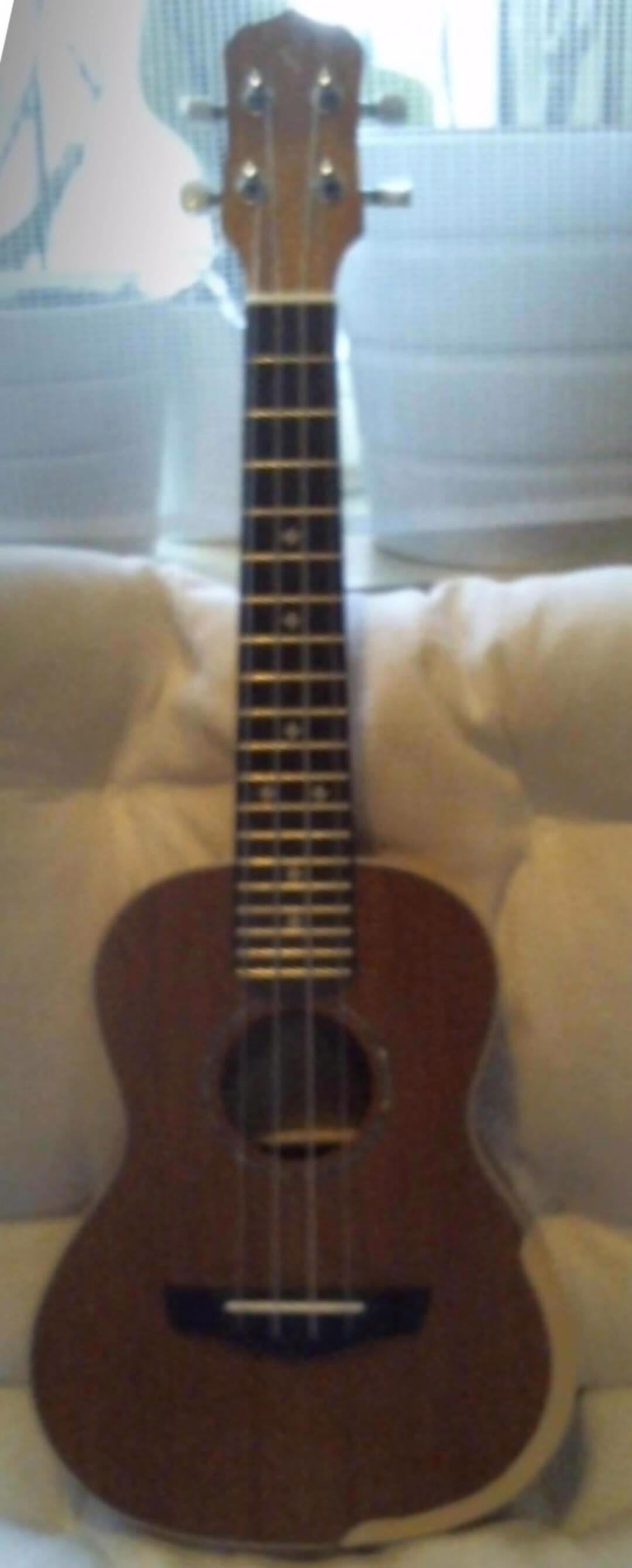 Hra na ukulele - foto 1