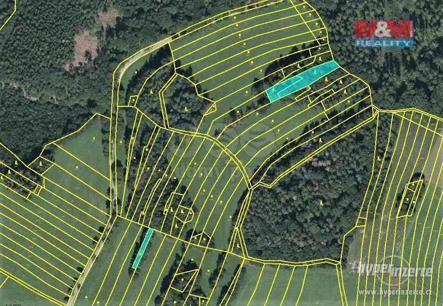 Prodej lesa, 420 m?, Vysoká u Jevíčka - foto 1
