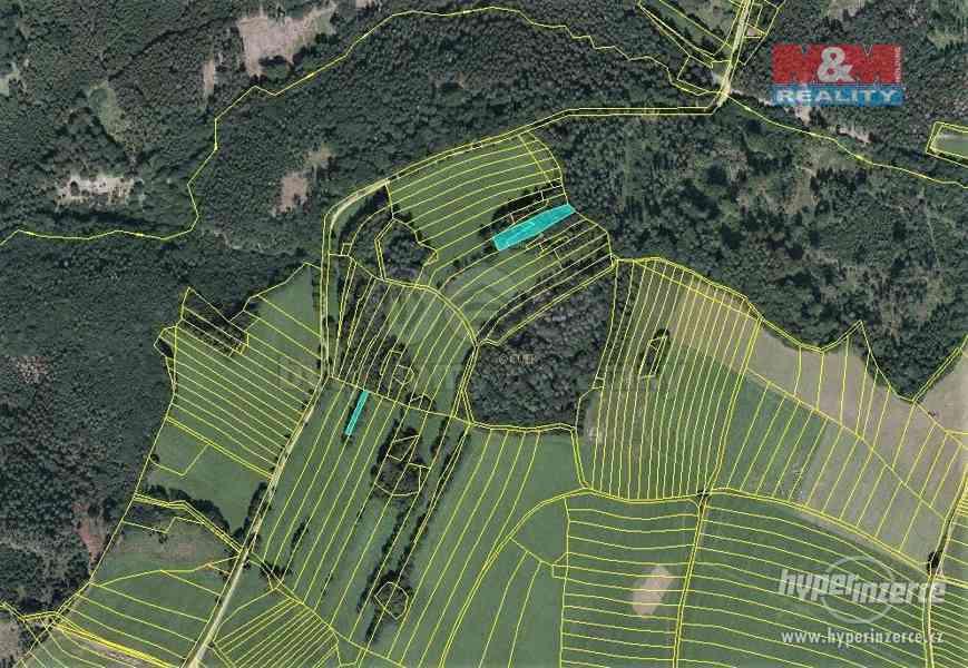 Prodej lesa, 420 m?, Vysoká u Jevíčka - foto 4