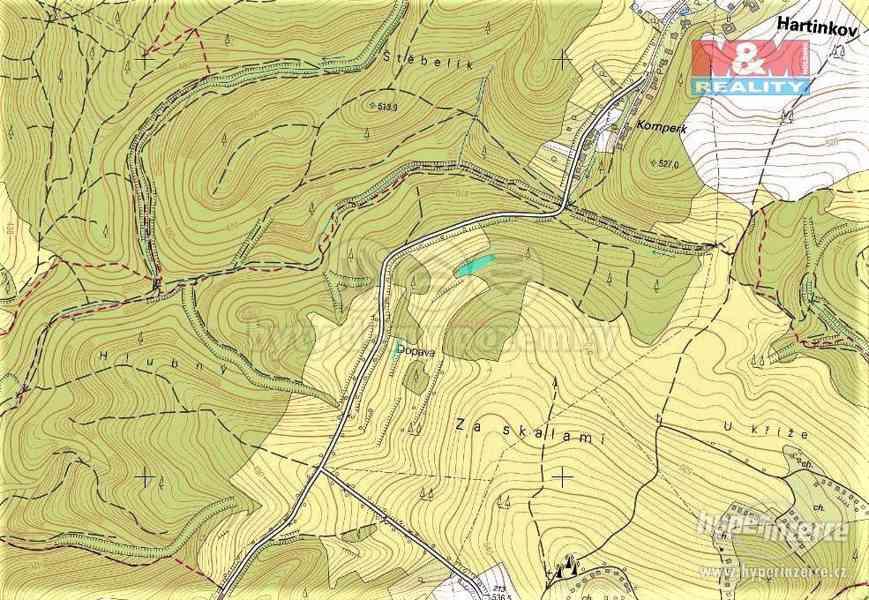 Prodej lesa, 420 m?, Vysoká u Jevíčka - foto 5